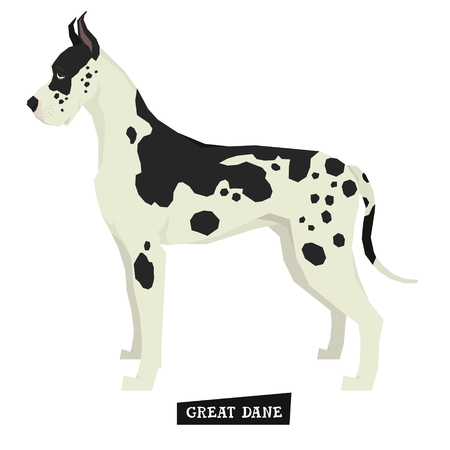 Dog collection Great Dane Geometric style Isolated object set