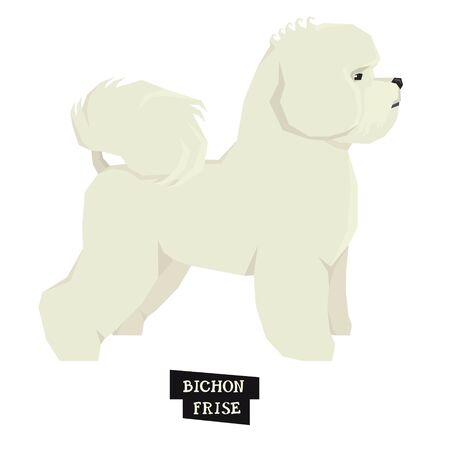 Dog collection Bichon Frise Geometric style Isolated object set