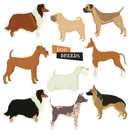 Dog collection Geometric style illustration. Vettoriali