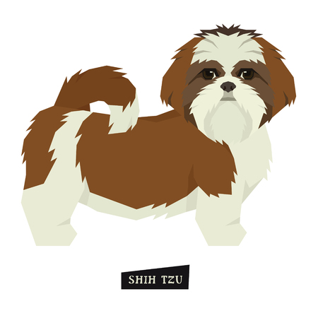 Dog collection Shih Tzu Geometric style Isolated object set. Vector Illustration