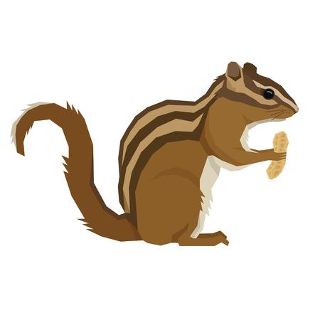 Forest Wildlife Vector animals Geometric style Chipmunk with peanut set