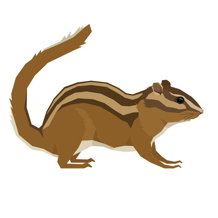 Forest Wild Life Isolated vector animals Geometric Chipmunk set
