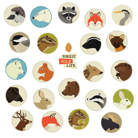Forest Wildlife Animals Round frames set