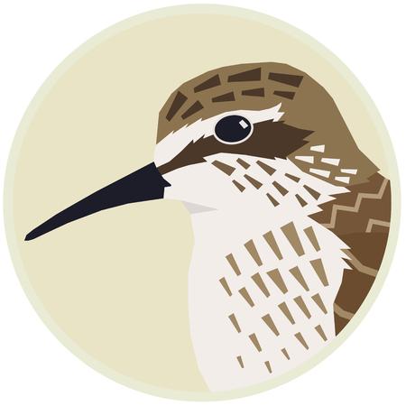 Sandpiper Vector illustration of a bird in a round frame set Illustration