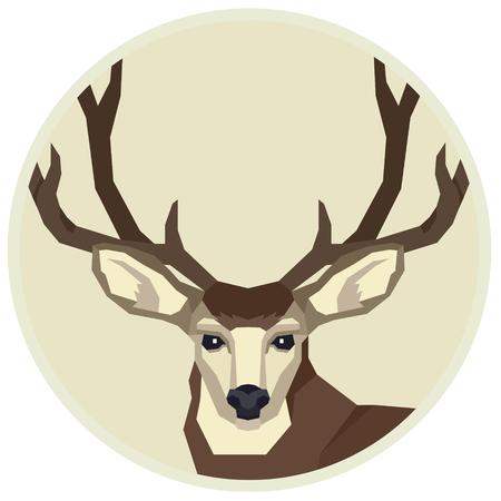 Animaux sauvages Vector illustration d'un cerf mulet Cadre rond Ensemble de style géométrique