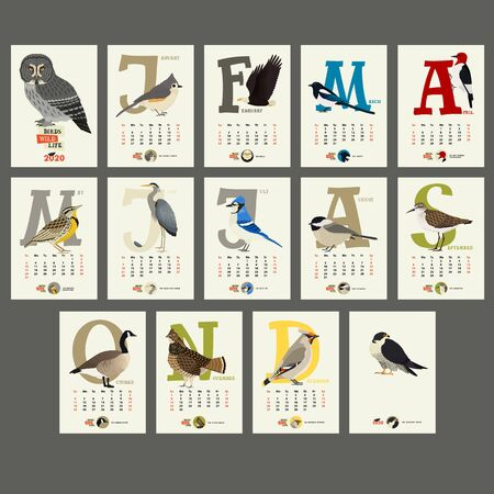 The calendar 2020 The Birds Wild life set Illustration