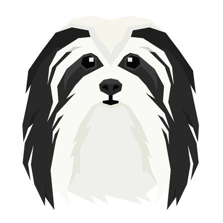 Vector illustration of the dogs head Havanese Dog Isolated object set