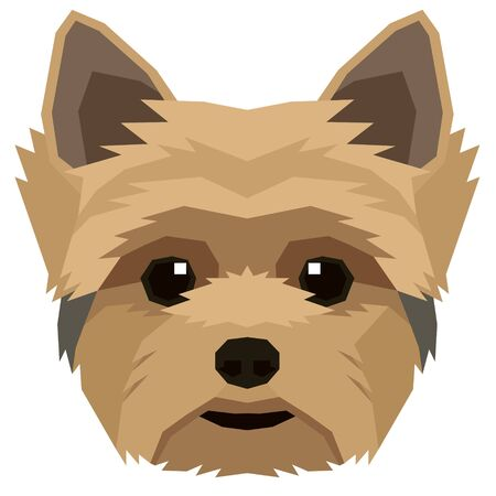 Vector illustration of the dogs head Yorkshire terrier Isolated object set