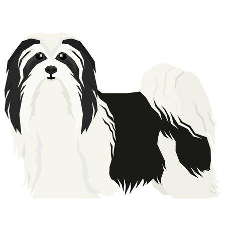 Vector illustration Dog collection Havanese Dog Geometric style Isolated object set 일러스트