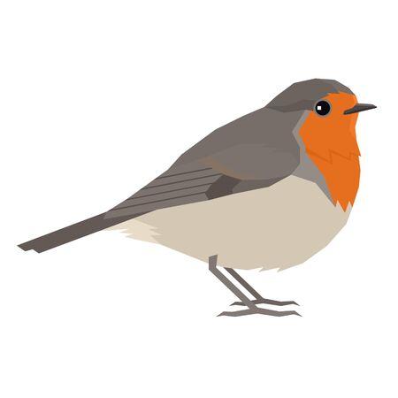 Robin bird Vector illustration Isolated object set Vektorové ilustrace