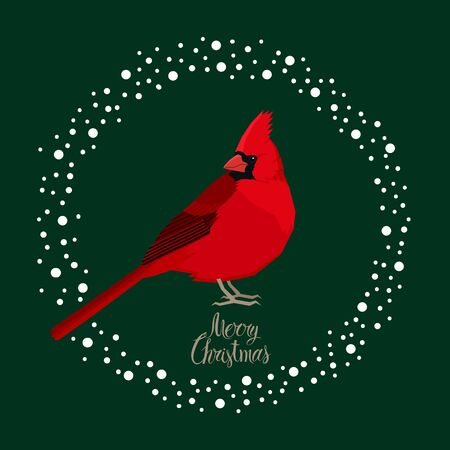Cardinal bird Vector illustration Merry Christmas card set Stock Illustratie