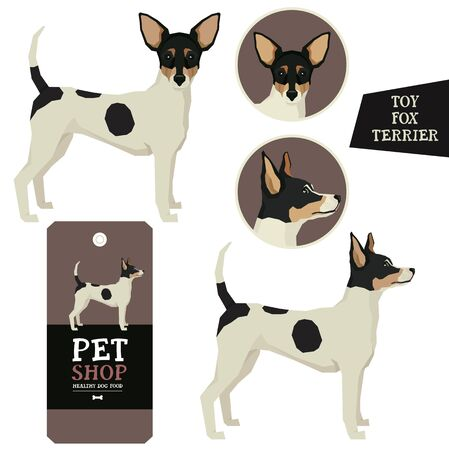 Vector illustration Dog collection Toy fox terrier  Geometric style set Illusztráció