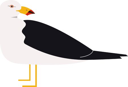 Sea birds Pacific gull Vector illustration Isolated object set 向量圖像