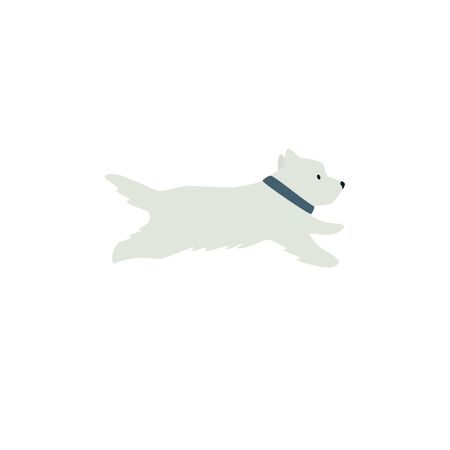 West Highland White terrier running White Dog Flat vector illustration on white background set Illustration