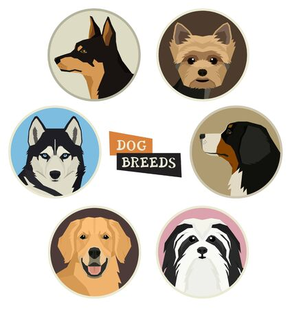 Set of dog breeds portraits in round frame Flat vector illustrations Geometric style set