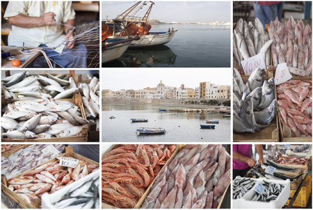 Fishing industry collage photo