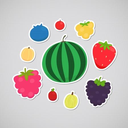 chicout�: Berry bleuets, canneberges, chicout�, fraise, BlackBerry, cassis, airelle rouge, la past�que, framboises