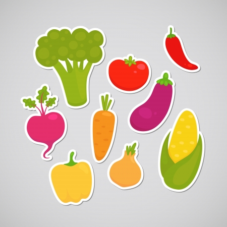 Vegetable  broccoli, carrot, tomato, pepper, onion, chili, eggplant, corn, beet  Vector
