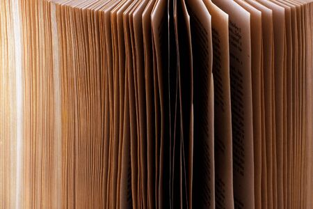 Open Book. Close Up Stock Photo - 7934219
