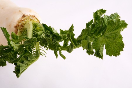 Image series of fresh vegetables on white background - turnip photo