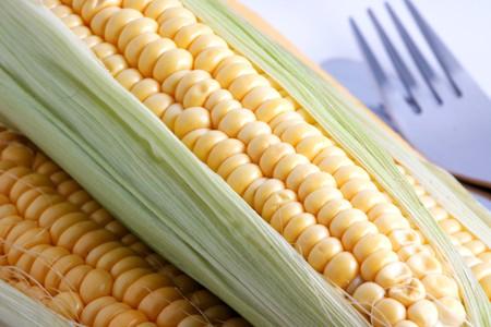 Harvest. Fresh vegetables isolated on white photo