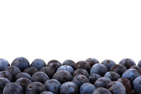 blue berry: Macro shot of fresh blueberries Stock Photo