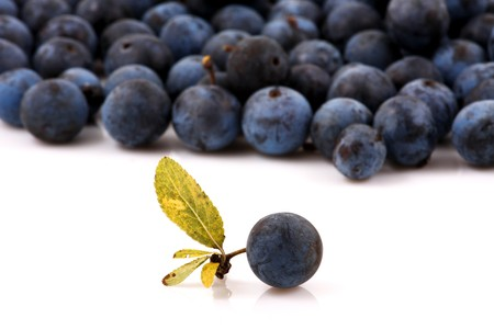 Macro shot of fresh blueberries photo