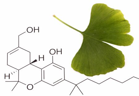 Ginkgo biloba on chemical formula background photo