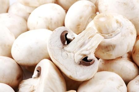 Fresh mushrooms photo