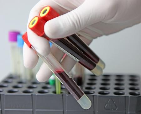 std: Scientist working at the laboratory