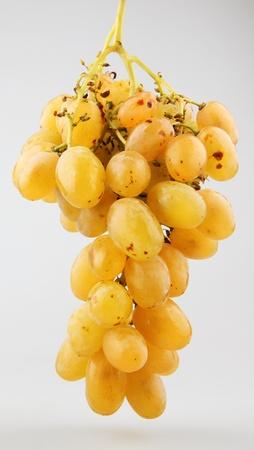 Fresh grape fruits photo