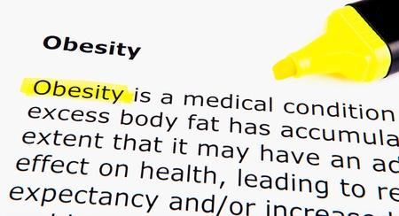 Obesity Stock Photo - 11495117