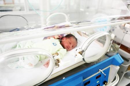 premature: Newborn baby inside incubator
