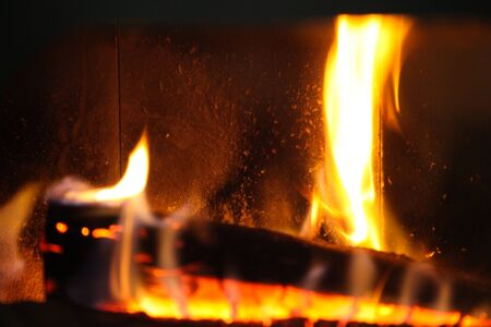 wood log in a fire place photo