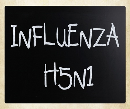 h1n1 vaccines: Images of the H5N1 Influenza Virus