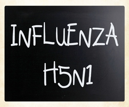Images of the H5N1 Influenza Virus Stock Photo - 13124611