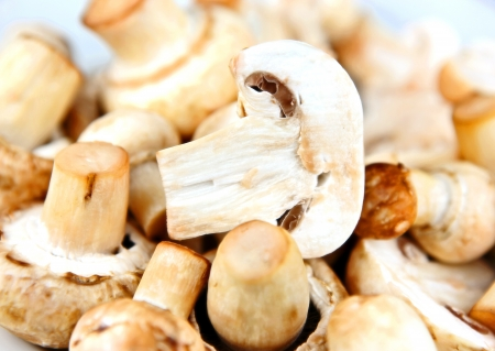 An edible mushroom, especially the much cultivated species Agaricus bisporus. photo