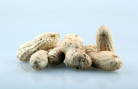Peanuts in the shell. photo
