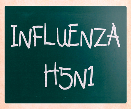 h1n1 vaccinations: Images of the H5N1 Influenza Virus