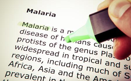 Malaria Stock Photo - 23506415