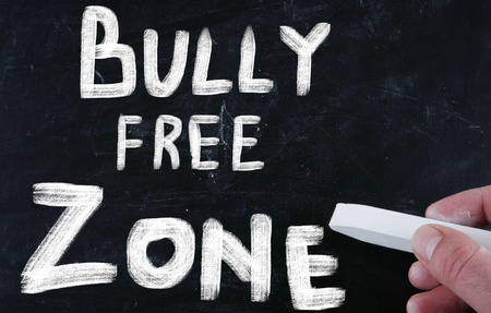 bully free zone photo