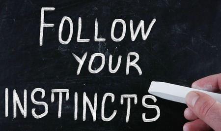 instincts: follow your instincts Stock Photo