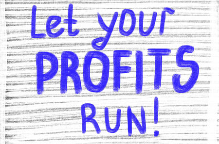 minimum wage: let your profits run!