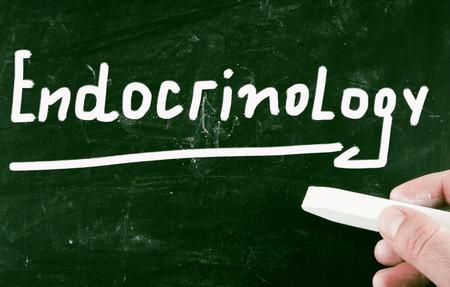 endocrinology: endocrinology Stock Photo