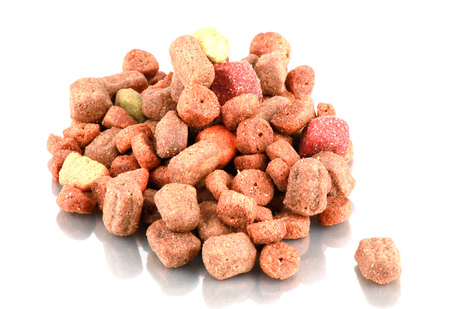 Dried pet food isolated on white background.