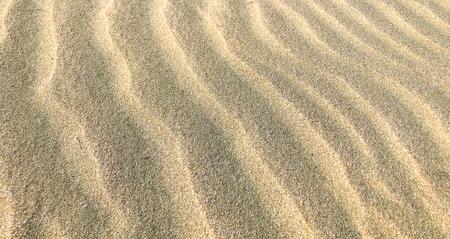 Sand Background Texture