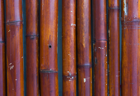 Bamboo fence texture with natural patterns.
