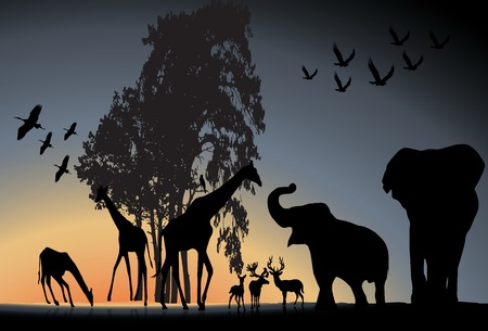 silhouetted: Sunset Safari Wildlife silhouetted against a sunset vector