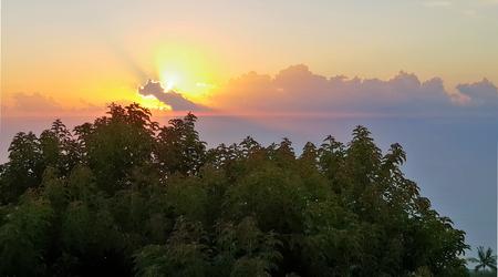 Puesta de sol en la isla de la reunión con árboles en primer plano