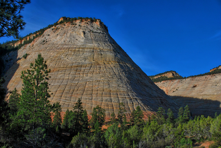 view on mountain in zion national park with checkerboard pattern, utah usa